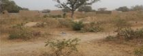 Nouveau forage à Tiélé, région de Koulikoro (Mali)
